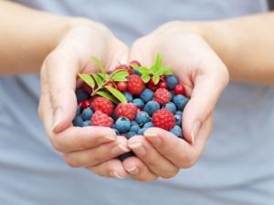 frutti-blu-per-circolazione-590x442